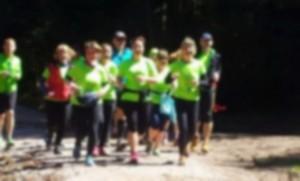 Läufer beim Frühlingslauf 2015_resize